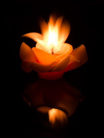 a single candle