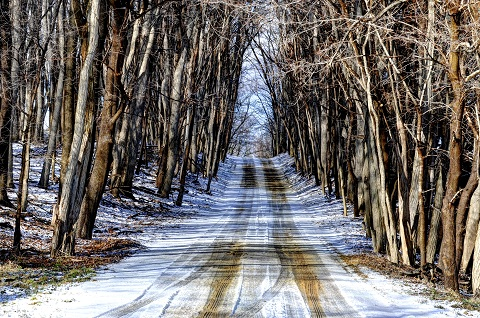 Winter_Road