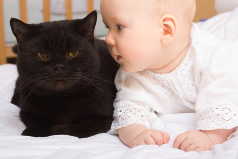 cute-baby-with-cat-by-niderlander.jpg