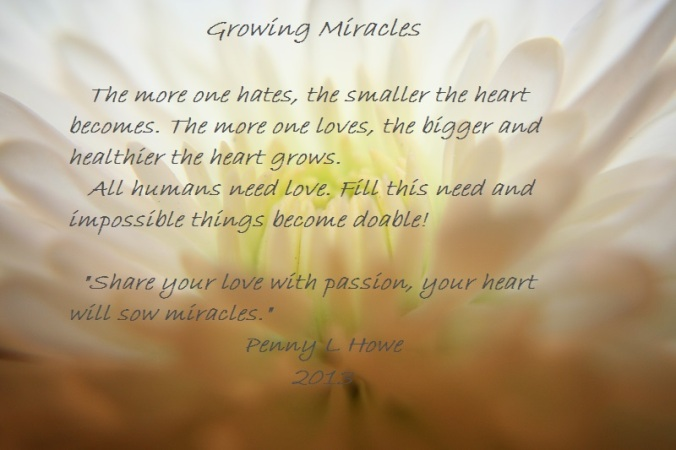 Sowing Miracles