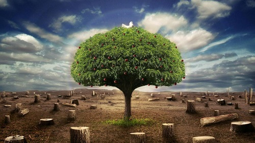 Alone-Tree-3D-HD-Wallpaper-Collection